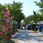 emplacement camping marseillan
